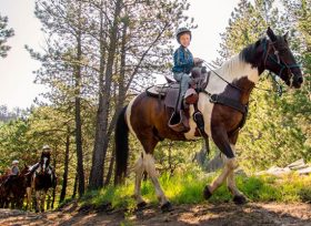 CBID Business Listing Hero Horseback Riding Play